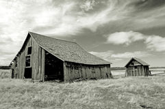 Pueblo fantasma de Oregon Fotos de archivo
