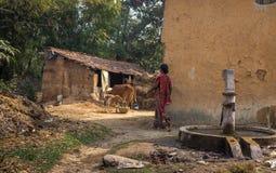 Pueblo indio rural con ganado, las casas del fango y el camino fangoso del pueblo Imagenes de archivo
