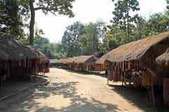 Pueblo largo de la tribu del cuello imagen de archivo