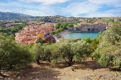 Pueblo mediterráneo de Collioure y de olivos Foto de archivo libre de regalías