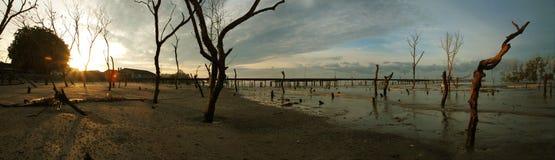 Pueblo pesquero del panorama Foto de archivo libre de regalías