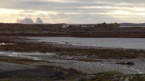 Pueblo por el mar en Noruega Imagen de archivo libre de regalías