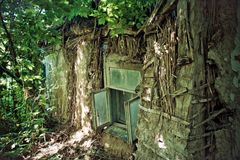 Pueblo ruso abandonado Casa rural arruinada overgrown Foto de archivo libre de regalías