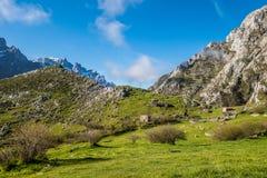 Pueblo viejo rústico de Picos de Europa Fotografía de archivo