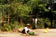 Pueblo vietnamita Fotografía de archivo