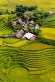 Pueblo vietnamita en un campo del arroz fotos de archivo