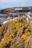 Pueblo y puerto de Portpatrick Fotos de archivo libres de regalías
