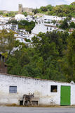Pueblos Blanco villages in Andalusia Stock Photo