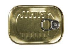 Pueda de sardinas Fotografía de archivo libre de regalías