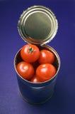 Pueda de tomates Foto de archivo libre de regalías