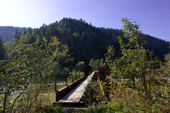 Puente abandonado Imagenes de archivo