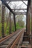 Puente abandonado viejo del ferrocarril del hierro Foto de archivo libre de regalías