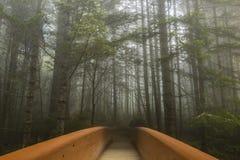 Puente al bosque Imágenes de archivo libres de regalías