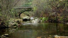 Puente antiguo sobre el río de Ribeira DA Pena al lado del pueblo de Pena almacen de video