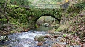 Puente antiguo sobre el río de Ribeira DA Pena, pueblo del esquisto de Pena metrajes