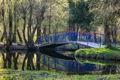 Puente azul sobre la charca en el parque Fotos de archivo