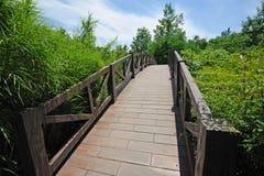 Puente bajo el cielo azul Imágenes de archivo libres de regalías