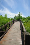 Puente bajo el cielo azul Imagen de archivo
