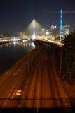 puente Cable-permanecido Fotografía de archivo libre de regalías