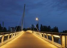 puente Cable-permanecido, Tampere Imágenes de archivo libres de regalías