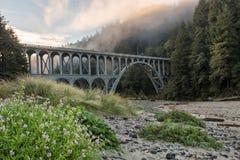 Puente cerca del faro de la cabeza de Heceta, costa de Oregon imágenes de archivo libres de regalías