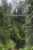 Puente colgante de Capilano Fotografía de archivo libre de regalías