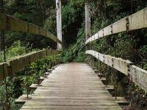 Puente colgante de madera Fotografía de archivo libre de regalías