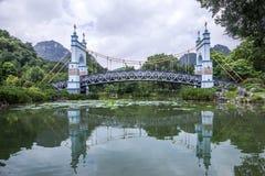 Puente colgante del paisaje fotografía de archivo libre de regalías