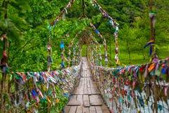 Puente colgante en Abjasia fotografía de archivo libre de regalías