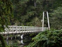 Puente colgante peatonal Fotos de archivo libres de regalías