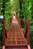 Puente colgante permite que los visitantes en la nube Forest Reserve de Monteverde vean la selva en medio del toldo de árboles imagen de archivo
