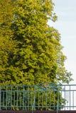 puente con los detalles y las fachadas cerca a un río en una tarde adentro Imagen de archivo