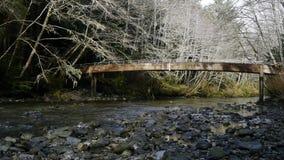 Puente con una cala que corre por debajo ella en Alaska almacen de metraje de vídeo