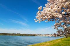 Puente conmemorativo de Arlington a través del río Potomac en Washington DC Fotografía de archivo libre de regalías