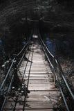 Puente contoneante rasguñado Fotografía de archivo