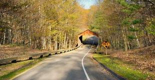 Puente cubierto de Michigan Imagen de archivo libre de regalías
