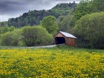 Puente cubierto en Vermont, los E.E.U.U. Fotos de archivo libres de regalías