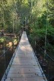 Puente de balanceo Imagen de archivo libre de regalías
