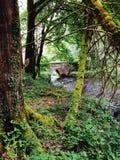 Puente de Ballynahinch foto de archivo