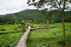 Puente de bambú en Pai, Tailandia imagen de archivo