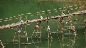 Puente de bambú sobre Nam Khan River almacen de metraje de vídeo