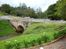 Puente de Boyaca Royaltyfri Foto