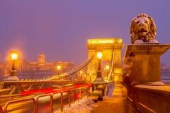 Puente de cadena en la noche, Budapest, Hungría Fotografía de archivo libre de regalías
