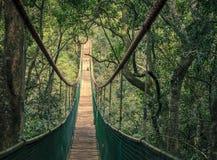 Puente de colgante Fotos de archivo libres de regalías