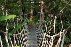 Puente de cuerda Fotografía de archivo libre de regalías
