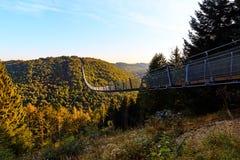 Puente de cuerda de ejecución Geierlay Imagen de archivo