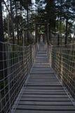 Puente de cuerda de madera imágenes de archivo libres de regalías