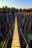 Puente de cuerda de Tsingy Imagen de archivo libre de regalías