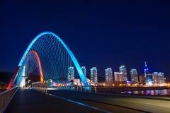 Puente de Expro en la noche en Daejeon, imagenes de archivo
