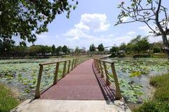Puente de flotación en el lago Cyberjaya Imagen de archivo libre de regalías